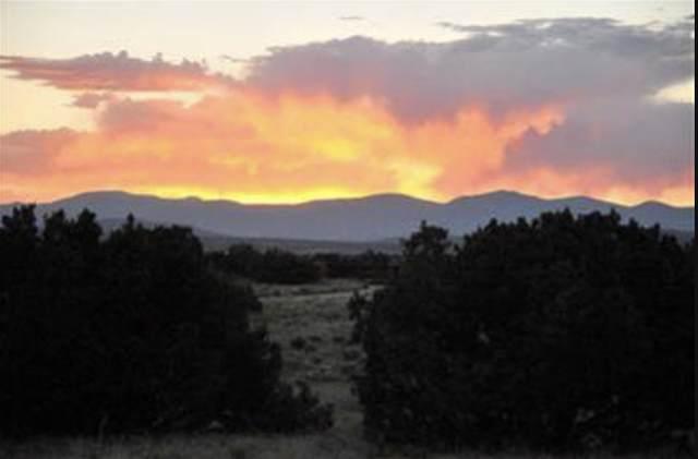 14 Camino Terra Bella, Santa Fe, NM 87507 (MLS #202000626) :: The Desmond Hamilton Group