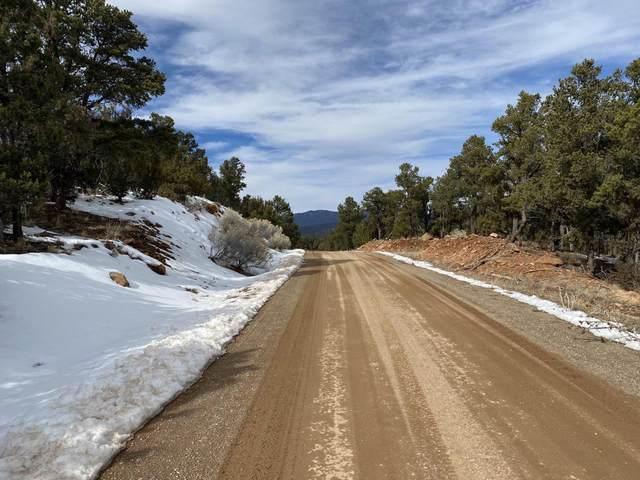36 Cicuye Drive, Pecos, NM 87522 (MLS #202000629) :: The Desmond Hamilton Group