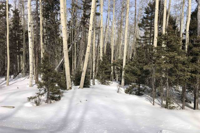 0 Brazos Dr Lot 59, Angel Fire, NM 87571 (MLS #202000630) :: The Desmond Hamilton Group