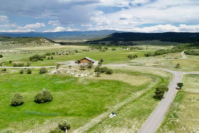 163 Cr 314, Cebolla, NM 87551 (MLS #202000665) :: The Desmond Hamilton Group