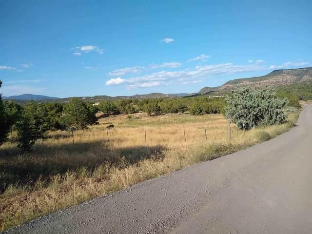 17 Ranchos Canoncito, Santa Fe, NM 87508 (MLS #202000667) :: The Desmond Hamilton Group