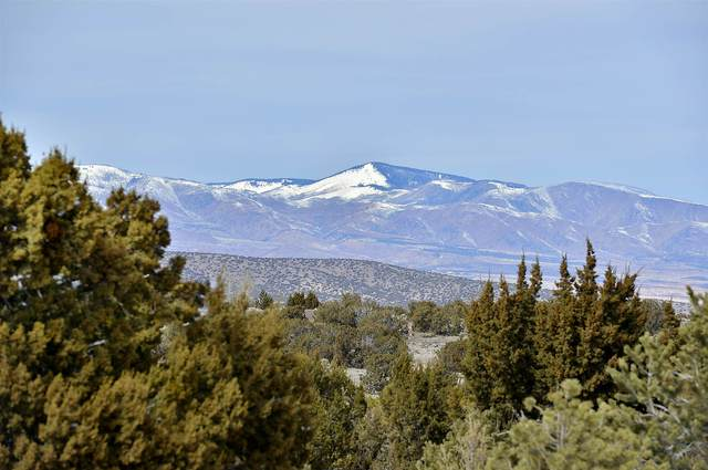 43 Via Pampa, Santa Fe, NM 87506 (MLS #202000680) :: The Very Best of Santa Fe