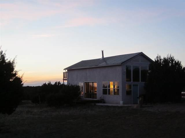 700 Apache Mesa Road, Los Montoyas, NM 87701 (MLS #202000716) :: The Desmond Hamilton Group