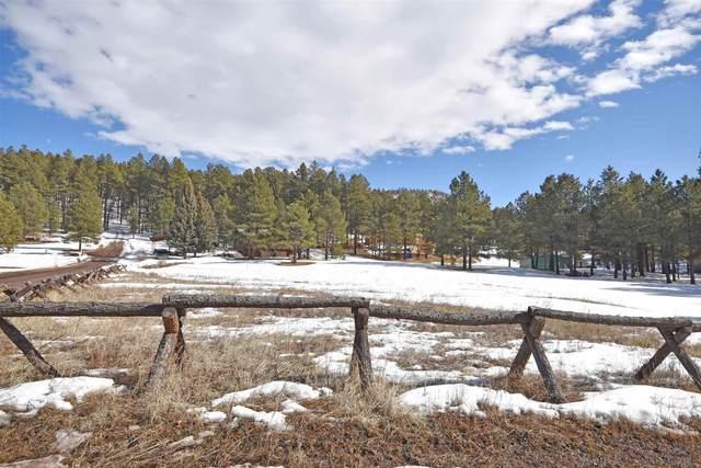 0 Elk Trail, Jemez Springs, NM 87025 (MLS #202000717) :: The Desmond Hamilton Group