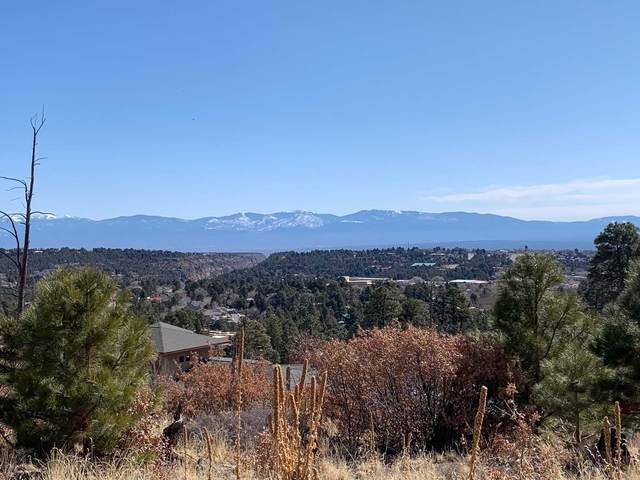 1610 Solana, Los Alamos, NM 87544 (MLS #202000722) :: The Desmond Hamilton Group