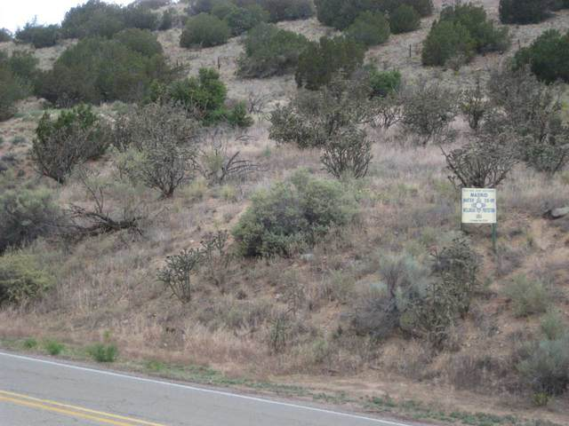 2813 Nm 14, Cerrillos, NM 87010 (MLS #202000779) :: The Very Best of Santa Fe