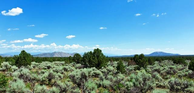 7.2 miles North Highway 111, La Madera, NM 87539 (MLS #202000868) :: Berkshire Hathaway HomeServices Santa Fe Real Estate