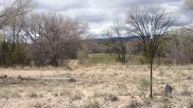 LOT 42 Apache Road, Abiquiu, NM 87510 (MLS #202000884) :: The Desmond Hamilton Group