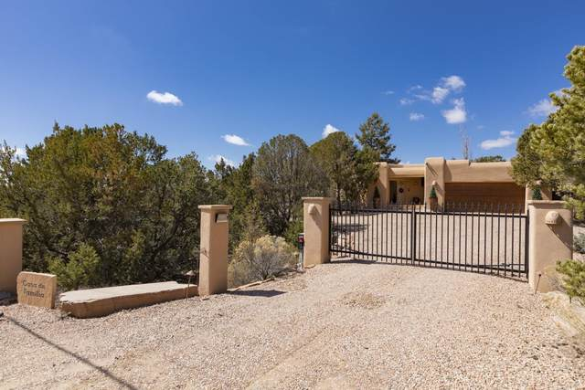 1022 Governor Dempsey Drive, Santa Fe, NM 87501 (MLS #202000926) :: The Desmond Hamilton Group