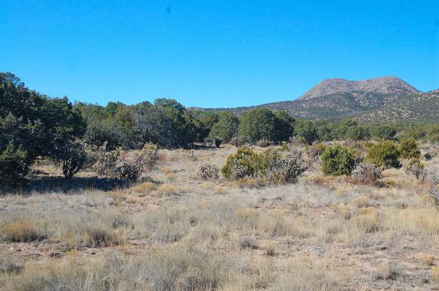 237 Cow Mill Rd, Stanley, NM 87056 (MLS #202000939) :: The Desmond Hamilton Group