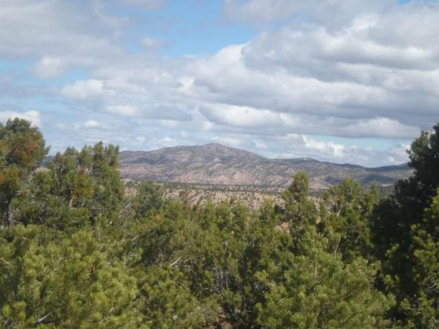 85 Paseo Encantado, Santa Fe, NM 87506 (MLS #202000968) :: The Desmond Hamilton Group