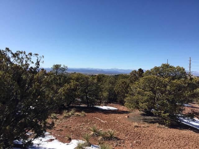 0 Old Santa Fe Trail, Santa Fe, NM 87505 (MLS #202001034) :: The Desmond Hamilton Group