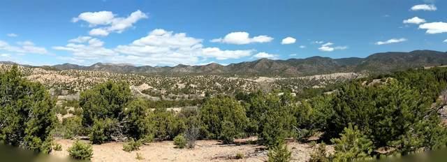 94 Paseo Encantado Ne, Santa Fe, NM 87506 (MLS #202001074) :: The Desmond Hamilton Group