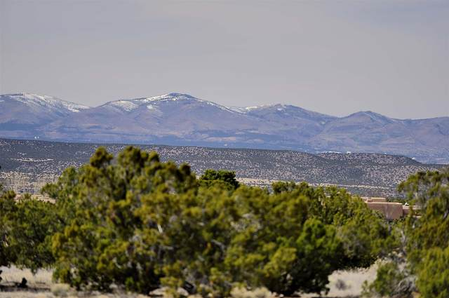 13 W Golden Eagle Rd, Santa Fe, NM 87506 (MLS #202001125) :: The Desmond Hamilton Group
