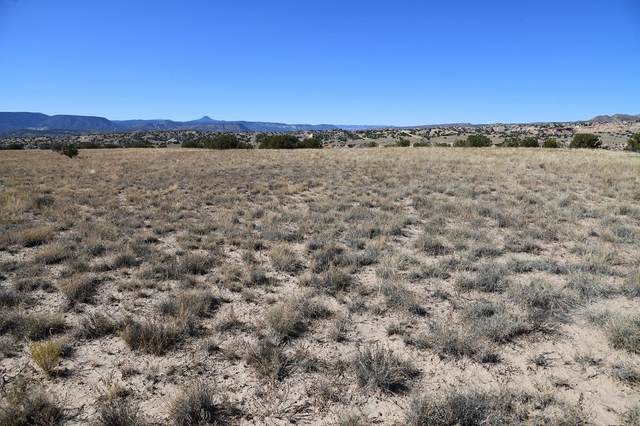 Tract 1A Blk 19 Unit 14, Abiquiu, NM 87505 (MLS #202001170) :: The Very Best of Santa Fe