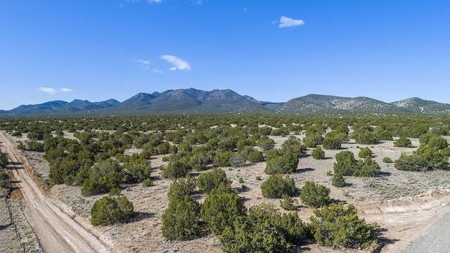 8 Stoney Road, Cerrillos, NM 87010 (MLS #202001173) :: The Very Best of Santa Fe