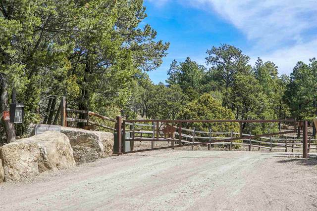 47 Silver Feather Trail Lot 6, Pecos, NM 87552 (MLS #202001205) :: The Very Best of Santa Fe