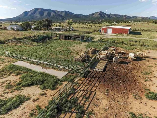 62 Moonbeam Ranch, Edgewood, NM 87015 (MLS #202001209) :: The Desmond Hamilton Group