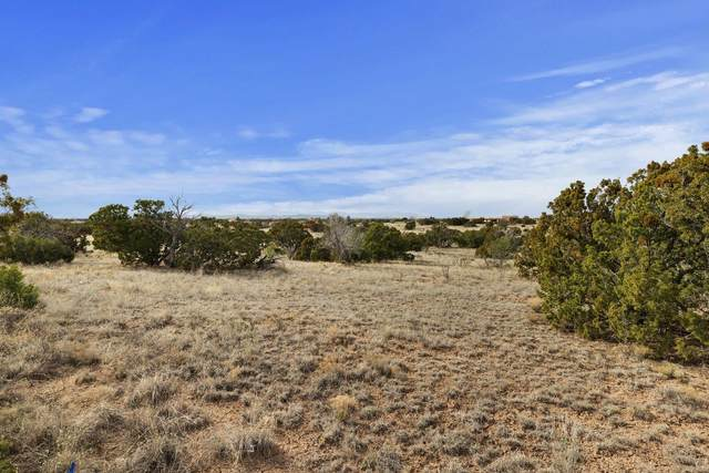 16 Demora, Eldorado, NM 87508 (MLS #202001214) :: Stephanie Hamilton Real Estate