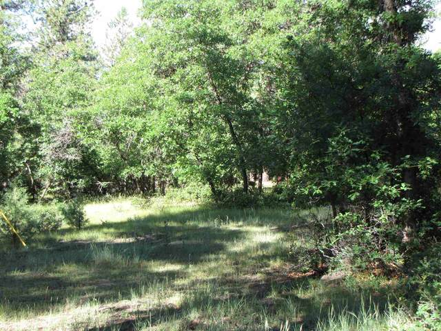 0 Block 2, Lot 17, Brazos Estates, Chama, NM 87520 (MLS #202001237) :: The Desmond Hamilton Group