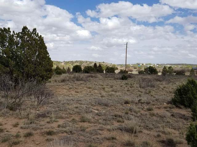 60 I-40 Frontage Road, Santa Rosa, NM 88435 (MLS #202001242) :: Summit Group Real Estate Professionals