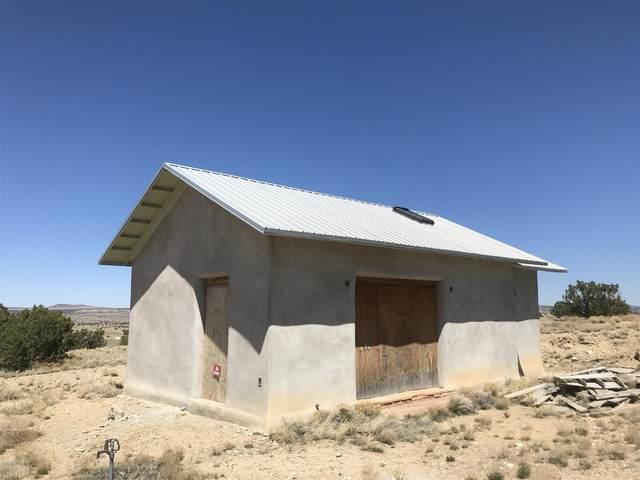 140 Via Sol Estrella, Cerrillos, NM 85010 (MLS #202001286) :: The Desmond Hamilton Group