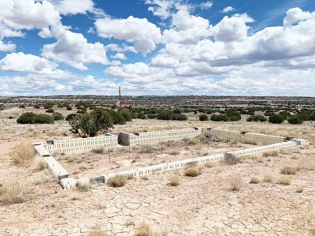 Lots 5 & 6 Pueblo Drive, Abiquiu, NM 87548 (MLS #202001322) :: Berkshire Hathaway HomeServices Santa Fe Real Estate