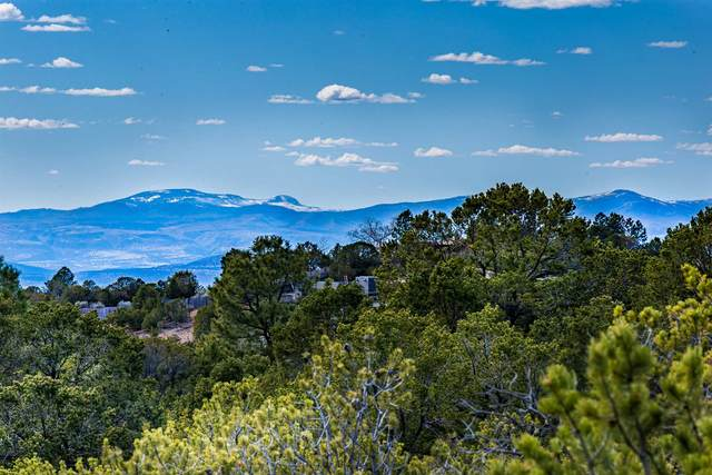 1800 Camino De Cruz Blanca, Santa Fe, NM 87505 (MLS #202001399) :: The Very Best of Santa Fe