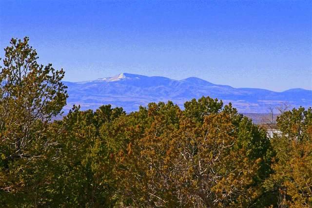300 Brownell Howland Rd, Santa Fe, NM 87501 (MLS #202001440) :: Stephanie Hamilton Real Estate