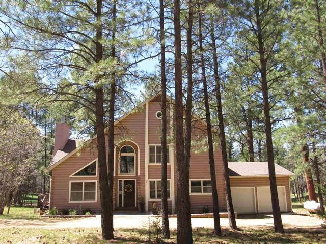 66 E Forest Dr, Rociada, NM 87742 (MLS #202001482) :: The Very Best of Santa Fe