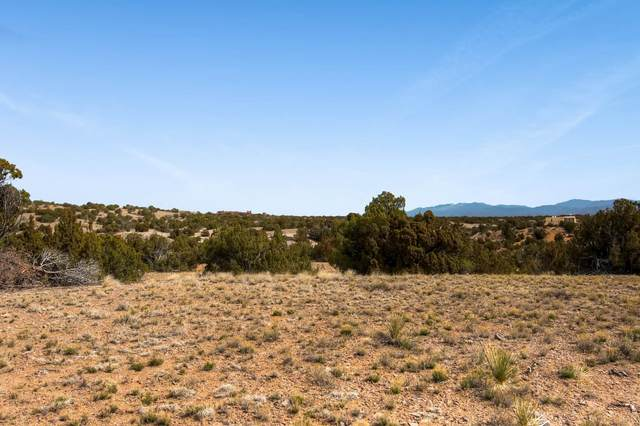 10 El Cerro Trail, Santa Fe, NM 87508 (MLS #202001506) :: The Desmond Hamilton Group