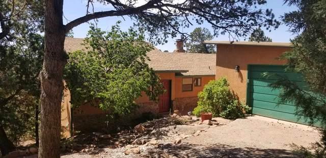19 Los Lomas Circle, Sandia Park, NM 87047 (MLS #202001529) :: The Desmond Hamilton Group