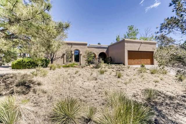 2203 Calle Cacique, Santa Fe, NM 87505 (MLS #202001531) :: The Desmond Hamilton Group