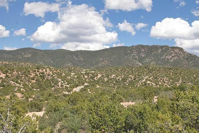 21 Sendero De Luz B, Santa Fe, NM 87506 (MLS #202001589) :: The Desmond Hamilton Group