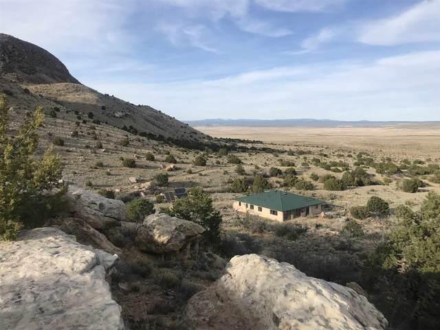 330 Anaya Ranch Road, Galisteo, NM 97540 (MLS #202001593) :: The Desmond Hamilton Group