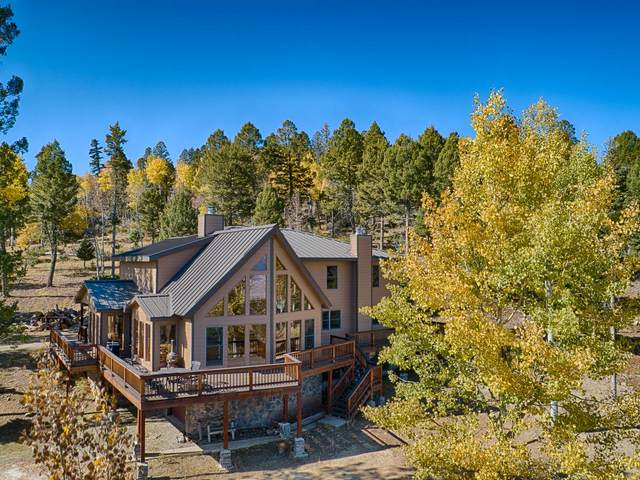 236 Brazos Dr, Angel Fire, NM 87710 (MLS #202001646) :: The Very Best of Santa Fe