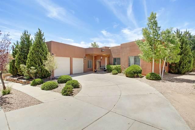4432 Chamisa Path, Santa Fe, NM 87507 (MLS #202001664) :: The Desmond Hamilton Group