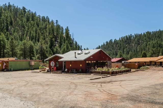 38710 Nm 126 38710 NM-126, Jemez Pueblo, NM 87025 (MLS #202001708) :: Summit Group Real Estate Professionals