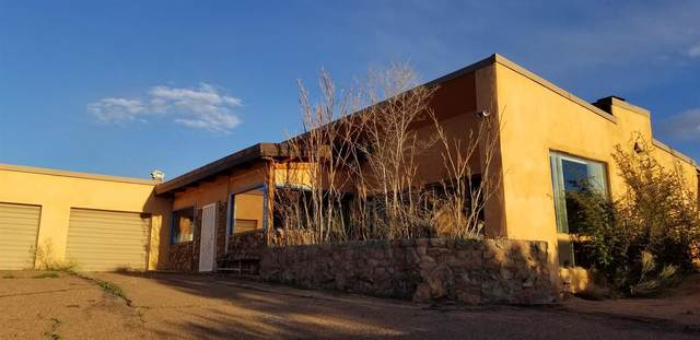 5000 Old Santa Fe Trail, Santa Fe, NM 87505 (MLS #202001745) :: The Desmond Hamilton Group