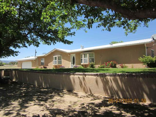 19 Private Drive 1545A, Hernandez, NM 87532 (MLS #202001752) :: The Desmond Hamilton Group