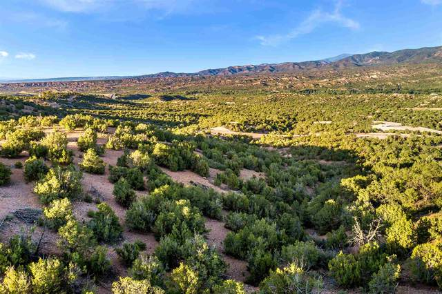 0 Monte Sereno Point, Santa Fe, NM 87506 (MLS #202001804) :: The Desmond Hamilton Group