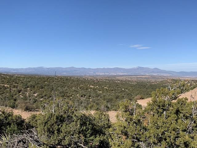 3273 Monte Sereno Drive- Lot 41, Santa Fe, NM 87506 (MLS #202001813) :: The Desmond Hamilton Group