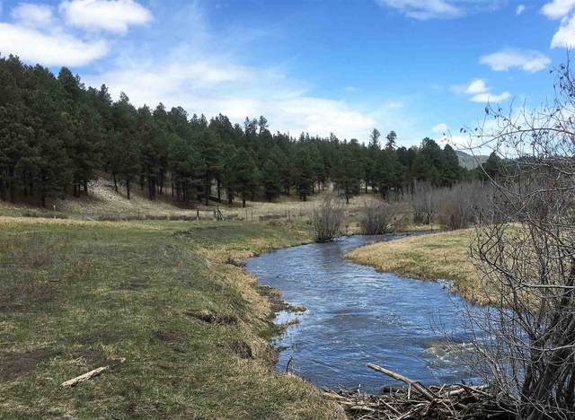 15 Highway 126, Cuba, NM 87013 (MLS #202001873) :: The Desmond Hamilton Group