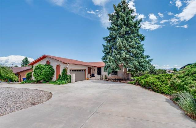 317 Rover Blvd, Los Alamos, NM 87544 (MLS #202001902) :: The Desmond Hamilton Group