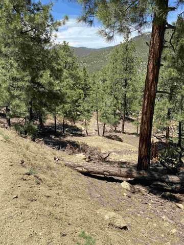 0 Mountain Top, Santa Fe, NM 87505 (MLS #202001907) :: The Desmond Hamilton Group