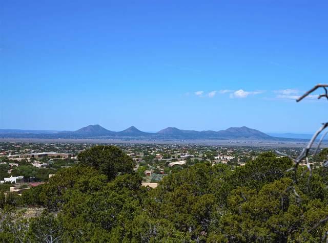47 Calle Alexia, Santa Fe, NM 87508 (MLS #202001920) :: The Desmond Hamilton Group