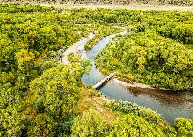 River Bosque Ranch, Antonito, CO 81120 (MLS #202001922) :: The Desmond Hamilton Group