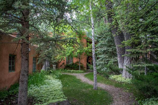 617 Ranchitos Rd., Taos, NM 87571 (MLS #202001923) :: The Desmond Hamilton Group