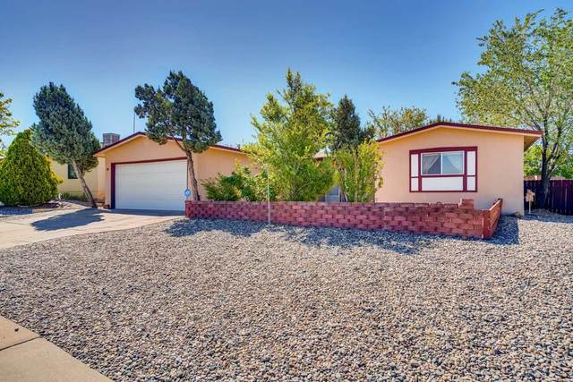 2814 Calle De Sonoro, Santa Fe, NM 87507 (MLS #202001929) :: The Desmond Hamilton Group