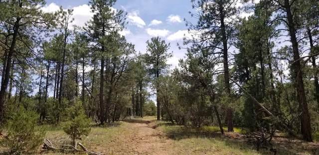 0 Camino Del Espiritu, Golden, NM 87047 (MLS #202001934) :: The Very Best of Santa Fe